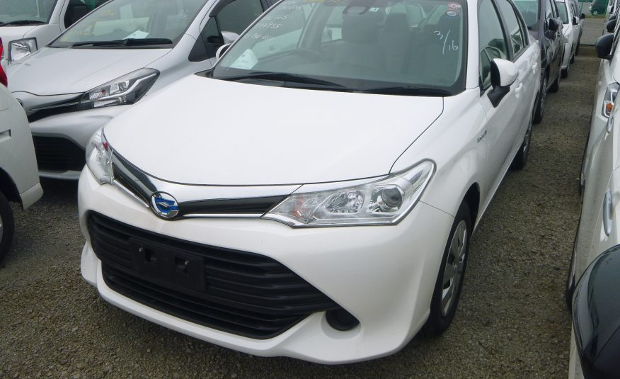 White 2017 AXIO HYBRID(reserved)